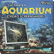 Saltwater Aquarium Video ScreenSavers